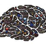המדריך למתחילים: להבין את תת המודע לפי nlp