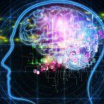 תוכנות העל – אבני היסוד של האישיות האנושית
