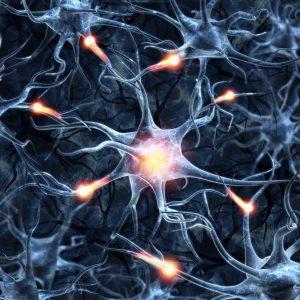 התמכרות במוח